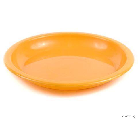 Тарелка пластмассовая (180 мм) — фото, картинка