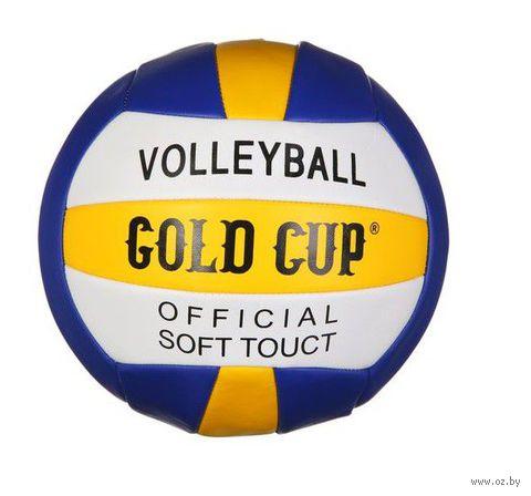 """Мяч волейбольный """"Volleyball"""""""