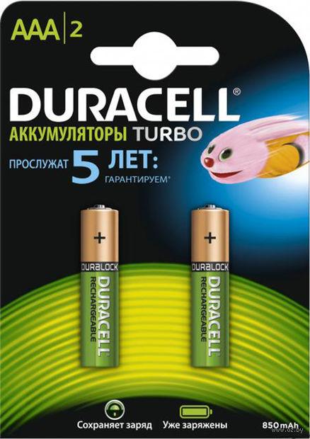 Аккумуляторы Duracell AAA HR03 850mAh (2 шт) — фото, картинка
