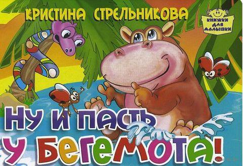 Ну и пасть у бегемота!. Кристина Стрельникова