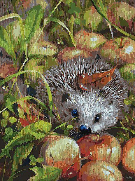"Картина по номерам ""Яблочный ёжик"" (300х400 мм) — фото, картинка"