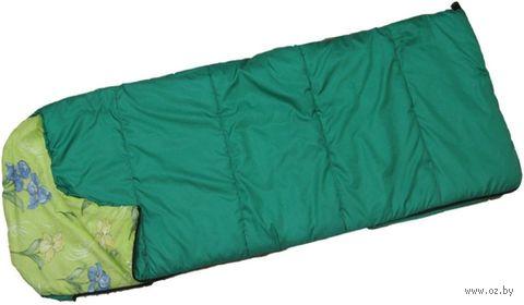 """Спальный мешок """"СПФ250"""" (ассорти) — фото, картинка"""