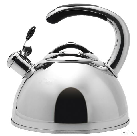 Чайник металлический со свистком (3 л; арт. MR-1334) — фото, картинка