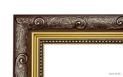 Рамка для картины по номерам (40х50 см; арт. 2139-6) — фото, картинка