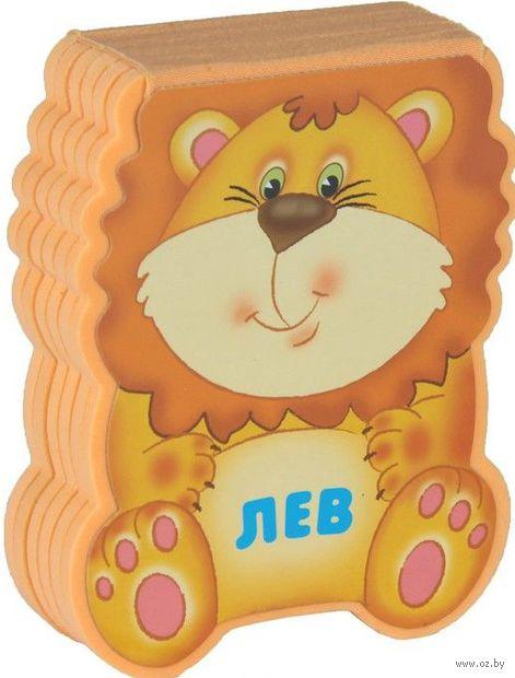 Лев. Виктор Мороз, Лариса Бурмистрова