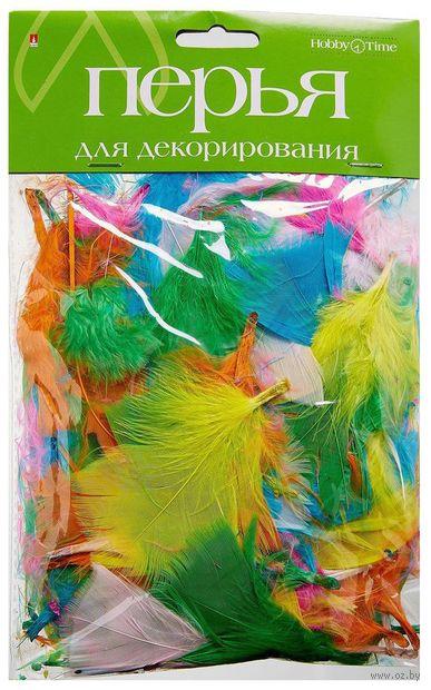 """Набор перьев """"Яркий микс"""" — фото, картинка"""