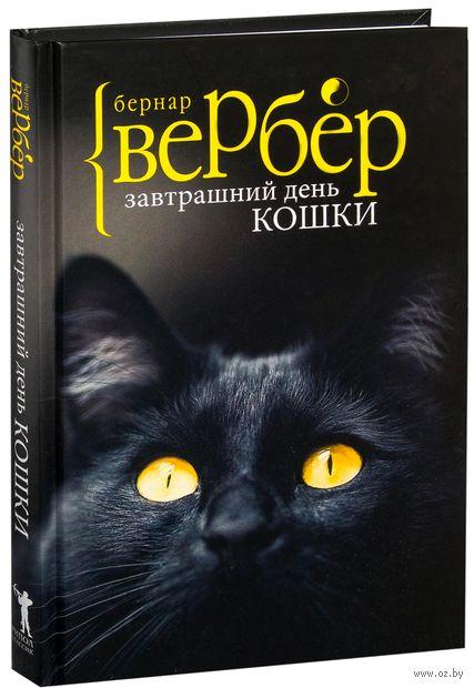 Завтрашний день кошки — фото, картинка