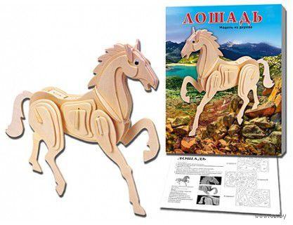 """Сборная модель из дерева """"Лошадь"""" — фото, картинка"""