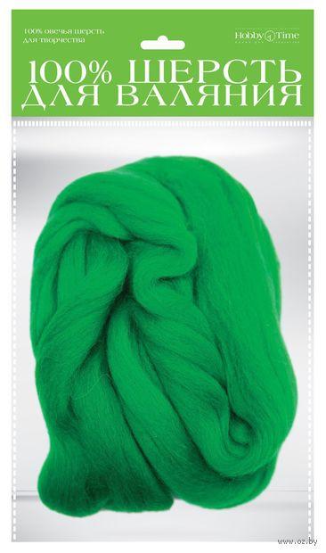 Шерсть для валяния (травяная; 50 г) — фото, картинка