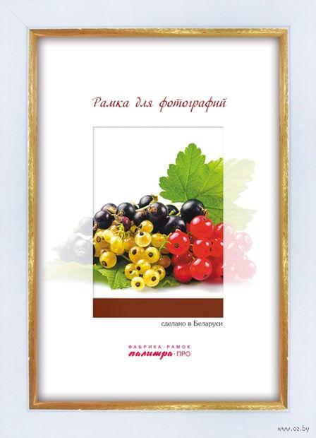 Рамка пластиковая со стеклом (18х24 см; арт. 202/602) — фото, картинка