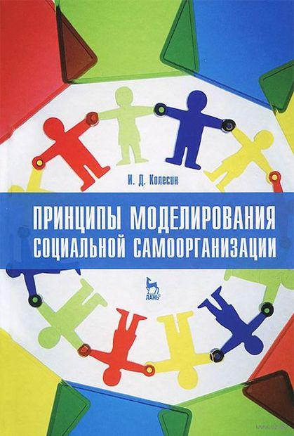 Принципы моделирования социальной самоорганизации. Игорь Колесин
