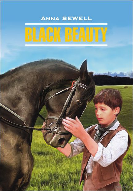 Black Beauty — фото, картинка