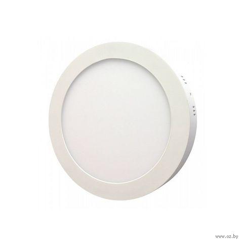 Светильник светодиодный (LED) Round SDL Smartbuy-14w/5000K/IP20 — фото, картинка