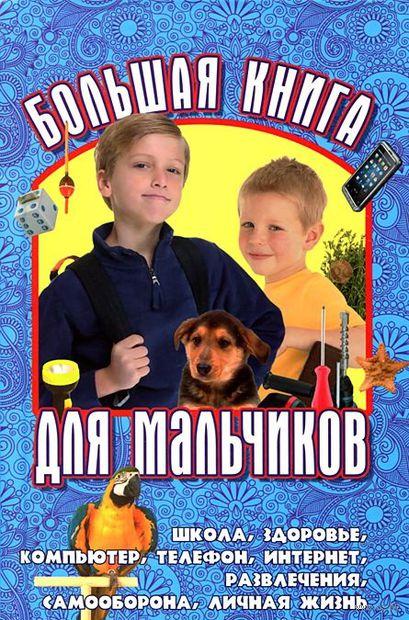 Большая книга для мальчиков. Юлия Виес