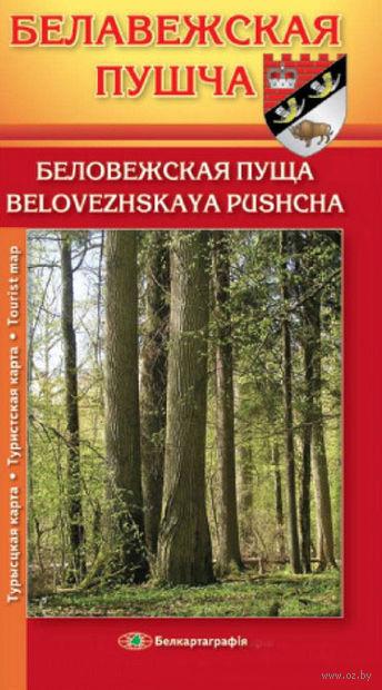 Беловежская пуща. Туристская карта
