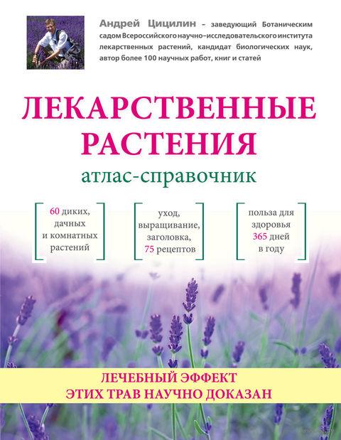 Лекарственные растения. Атлас-справочник — фото, картинка