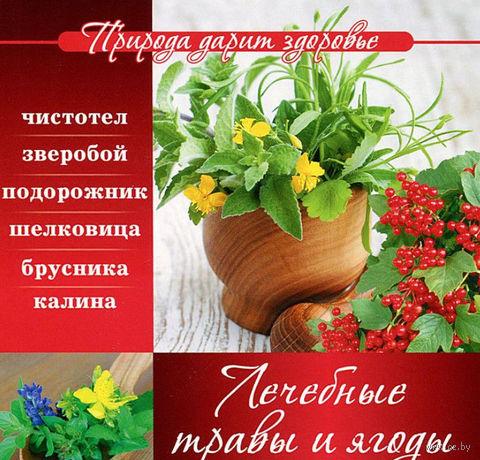 Лечебные травы и ягоды