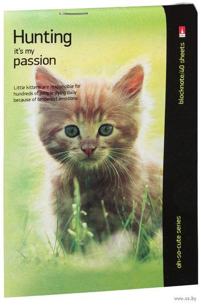 """Блокнот в клетку """"Котята и щенята"""" (А6; в ассортименте) — фото, картинка"""