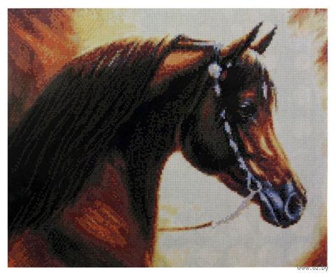 """Алмазная вышивка-мозаика """"Конь"""""""