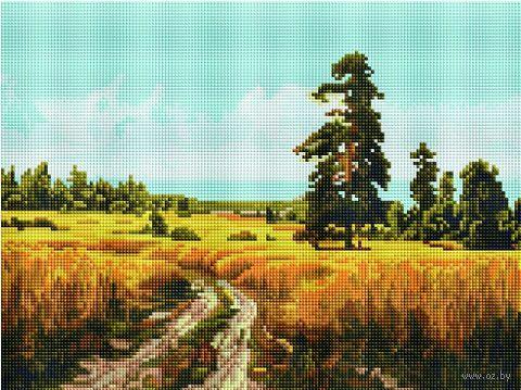 "Алмазная вышивка-мозаика ""Дорога через поле"" (300х400 мм) — фото, картинка"