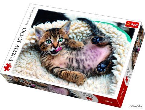 """Пазл """"Весёлый котёнок"""" (1000 элементов) — фото, картинка"""