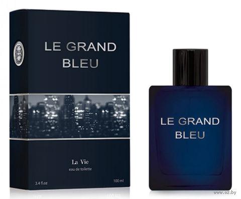 """Туалетная вода для мужчин """"Le Grand Bleu"""" (100 мл) — фото, картинка"""
