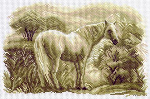 """Канва с нанесенным рисунком """"Лошадь"""""""
