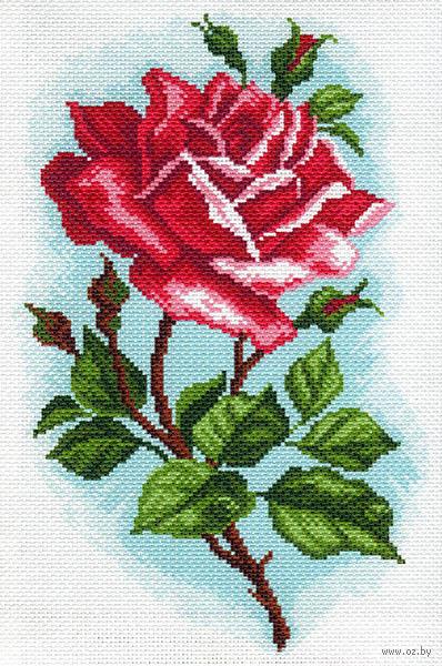 "Канва с нанесенным рисунком ""Роза Осирия"" — фото, картинка"