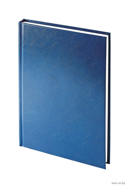 "Ежедневник недатированный ""Ideal New"" (А5; синий) — фото, картинка"
