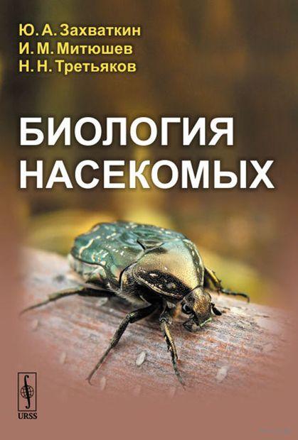 Биология насекомых — фото, картинка