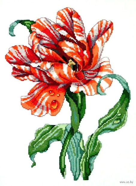 "Вышивка крестом ""Тигровый тюльпан"" (230x325 мм) — фото, картинка"