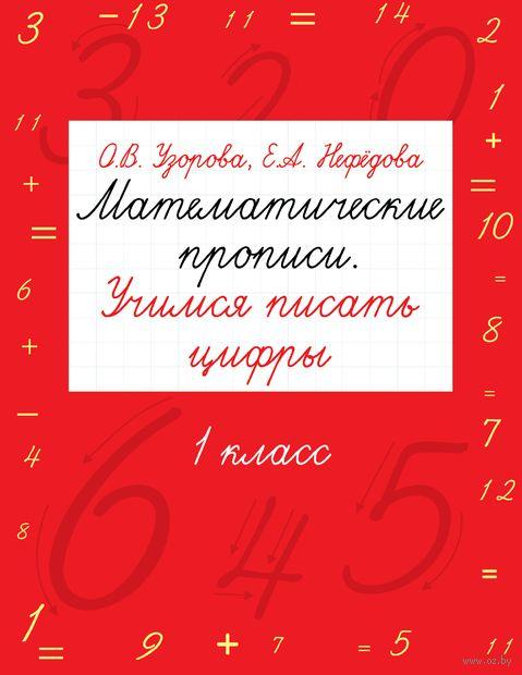 Математические прописи. Учимся писать цифры. 1 класс — фото, картинка