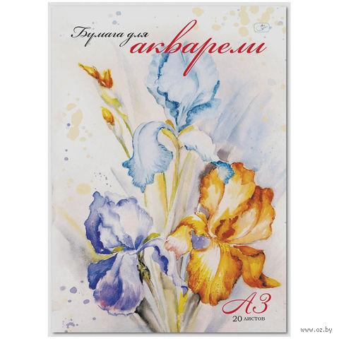 """Папка для акварели """"Ирисы"""" (А3; 20 листов)"""