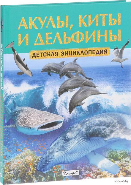 Акулы, киты и дельфины — фото, картинка