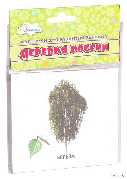 Деревья России. Карточки для развития ребенка — фото, картинка