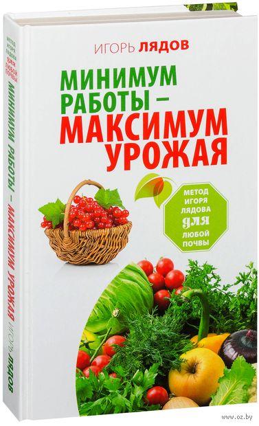 Минимум работы - максимум урожая! Метод Игоря Лядова для любой почвы — фото, картинка