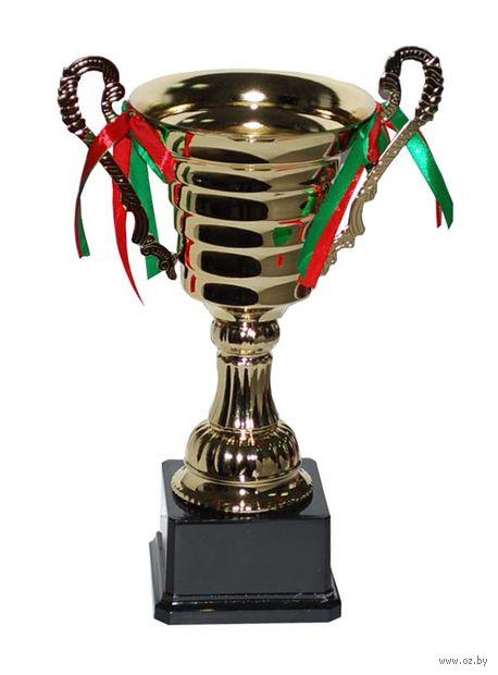 Кубок сувенирный (арт. 4016C) — фото, картинка