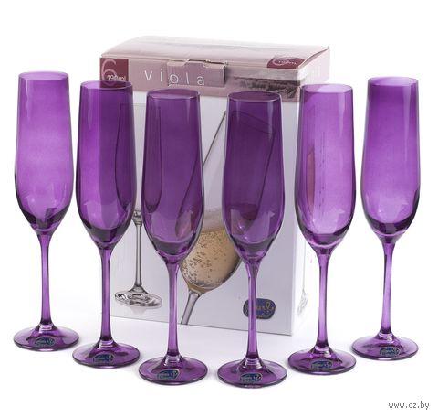 """Бокал для шампанского стеклянный """"Viola"""" (6 шт.; 190 мл; арт. 40729/D4789/190) — фото, картинка"""