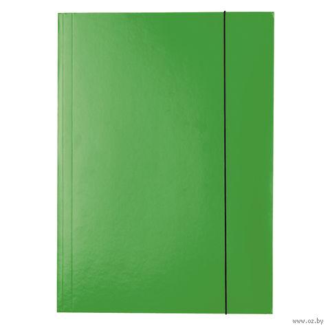 """Папка А4 картонная на резинках """"Esselte"""" (зеленая)"""