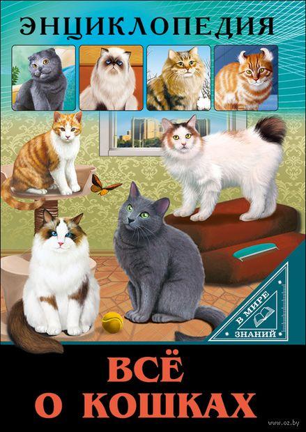 Все о кошках — фото, картинка