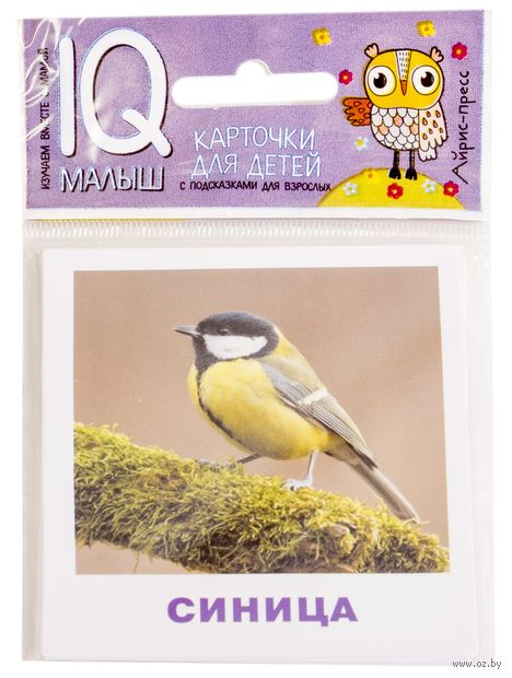 Птицы. Набор карточек для детей — фото, картинка