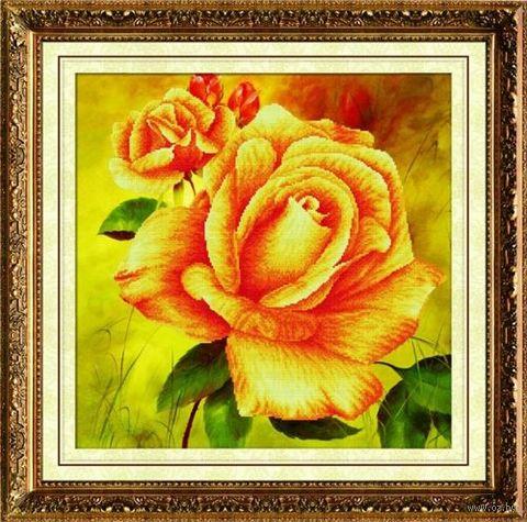 "Алмазная вышивка-мозаика ""Чайная роза"" (500х500 мм) — фото, картинка"