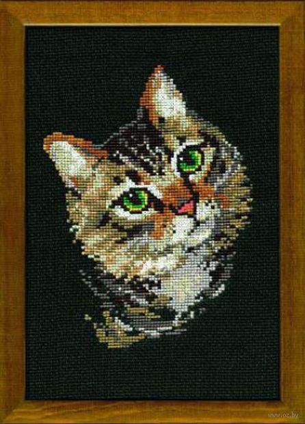 """Вышивка крестом """"Серая кошка"""" (210х300 мм) — фото, картинка"""