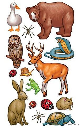 """Стикеры для скрапбукинга """"Стико. Животные леса"""" (арт. EKS-SPCLS197)"""