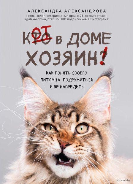 Кот в доме хозяин! Как понять своего питомца, подружиться и не навредить — фото, картинка