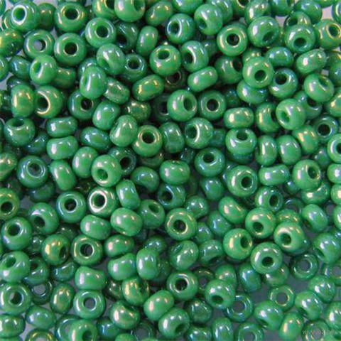 Бисер №54250 (зеленый, радужный; 10/0)