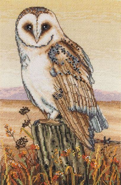 "Вышивка крестом ""Сова на фоне горизонта"" (230х160 мм) — фото, картинка"