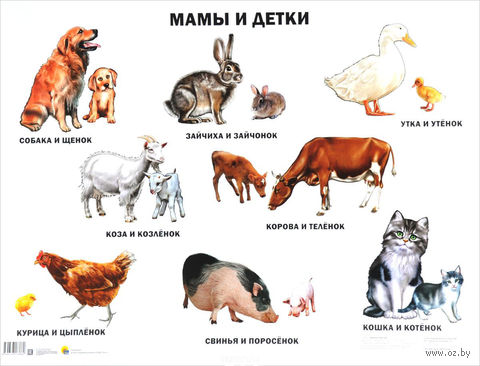 Мамы и детки. Плакат