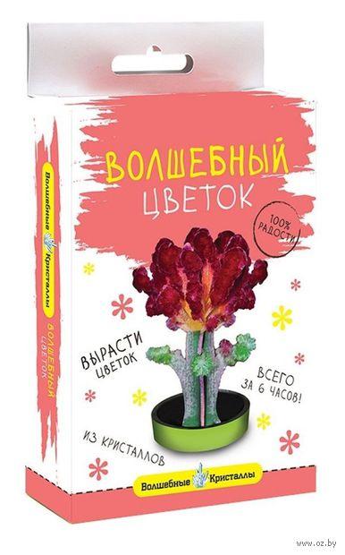 """Набор для выращивания кристаллов """"Бордовый цветок"""" — фото, картинка"""