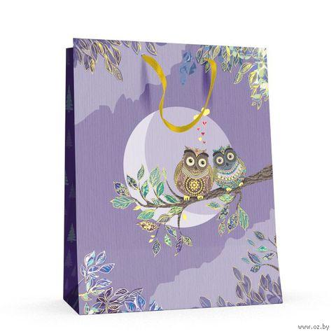 """Пакет бумажный подарочный """"Совы"""" (26x32,5x13 см) — фото, картинка"""